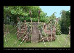 Petites Histoires de la Forêt