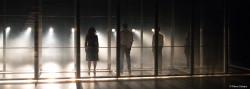 Trust, de Falk Richter - Création 2019